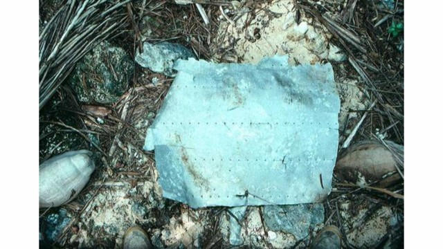 New Evidence Strengthens Theory That Amelia Earhart Died On Uninhabited Pacific Atoll