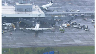 Airline Bans Baggage Handler Who Dozed In Plane's Cargo Hold