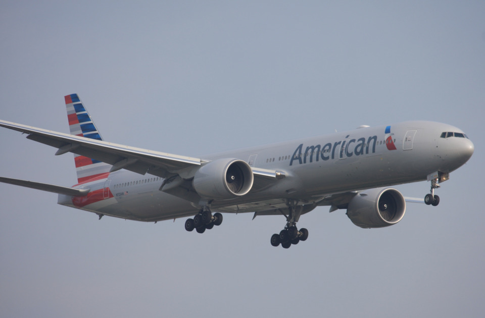 American Airlines Limits Emotional Support Animals To Dogs