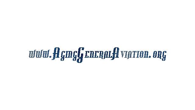 aginggeneralaviationlogosm_10692744.psd