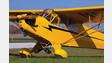 Cubs 2 Oshkosh Centerpiece of Vintage Aircraft Association Display