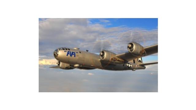 fifi-2.jpg