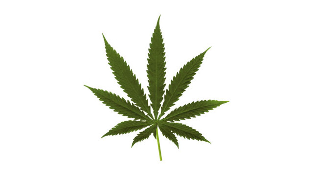 Blog-Marijuana-Leaf.jpg