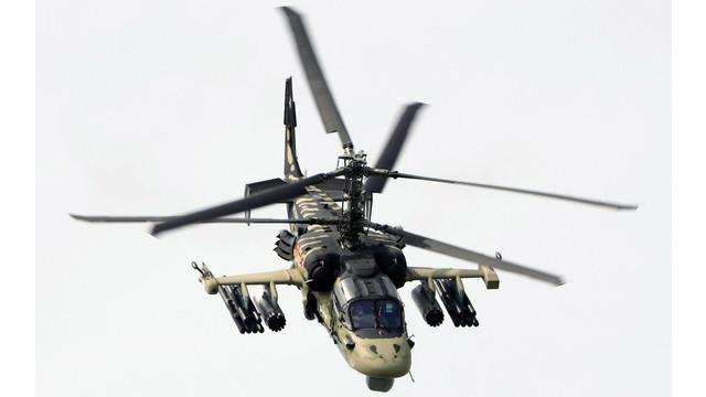 BerlinKa-52-Alligator.jpg