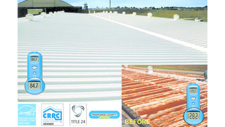Rubber roof sealant
