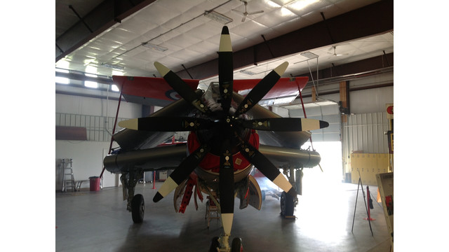 One of a kind janet the gannet to land at eaa airventure