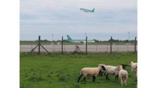 Aer Lingus Backs Takeover